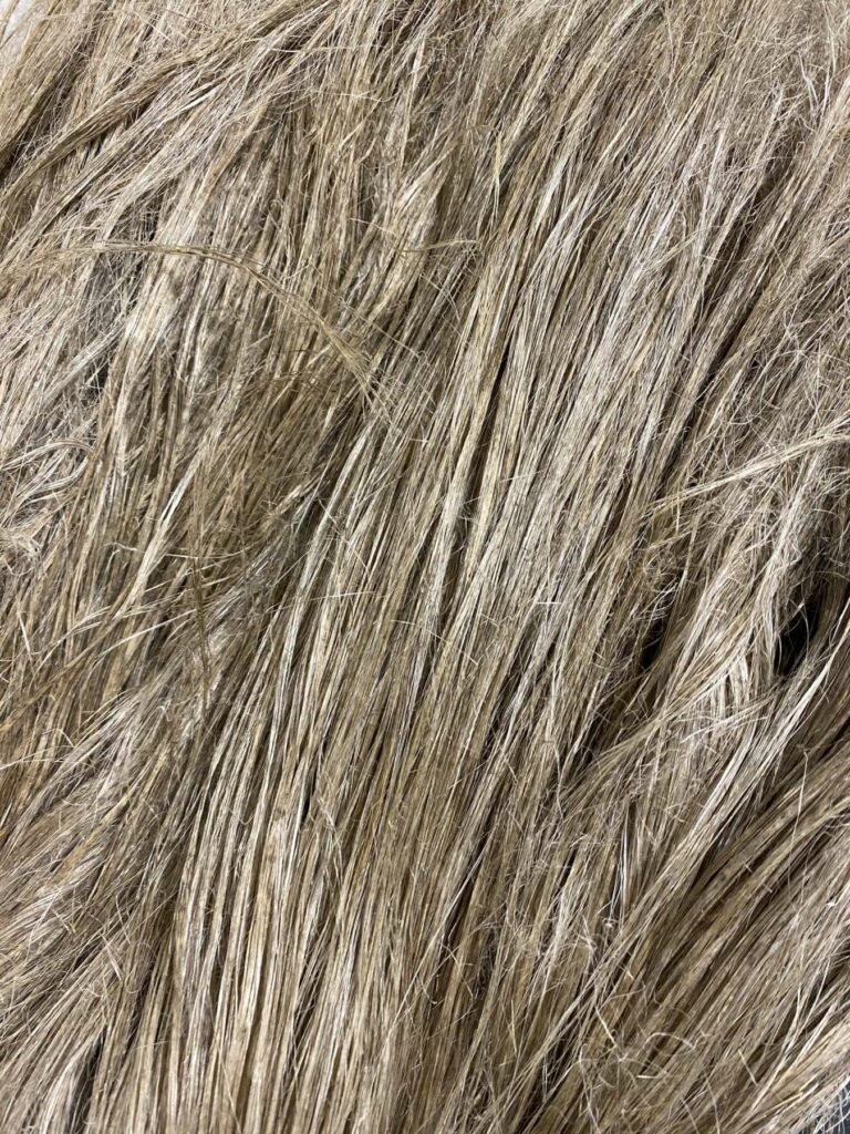 Safilin flax fiber